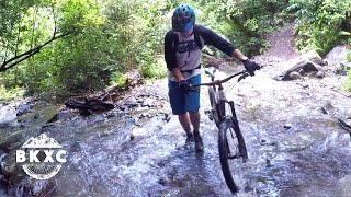 Mountain Biking near Nelson, New Zealand, with Sacred Rides
