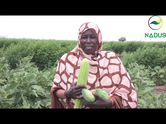 قصة نجاح الناشطة الزراعية نعمات محمد علي