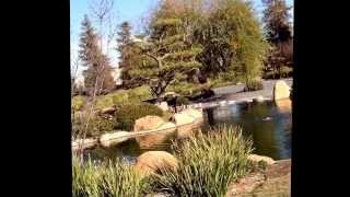 Japanese Garden - Los Angeles