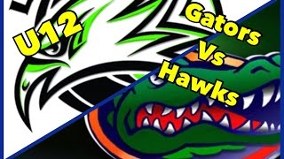 U12 Gators Vs Hawks