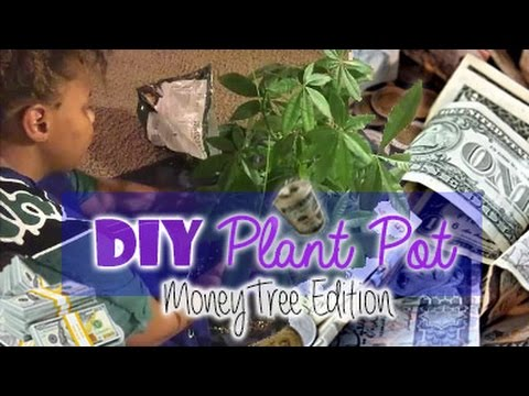 plant care guide green thumb techniques how to trim doovi. Black Bedroom Furniture Sets. Home Design Ideas