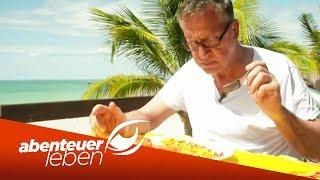 Kulinarisches Abenteuer auf Jamaika: Dirk Hoffmann on Tour | Abenteuer Leben | Kabel Eins