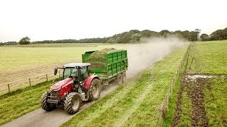 3rd-cut-silage-coming-in-big-and-fast