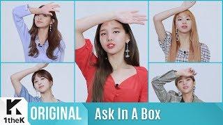 Ask In A Box Special(에스크 인 어 박스 스페셜): TWICE(트와이스) _ Dance The Night Away(제자리 댄스 Ver.)