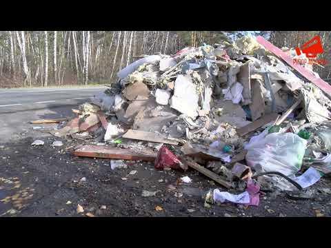 Экоцид в Ленинском районе Московской области