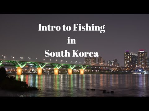 Intro To Fun And Crazy Fishing In South Korea !!!!!! (must See) 한국 낚시!