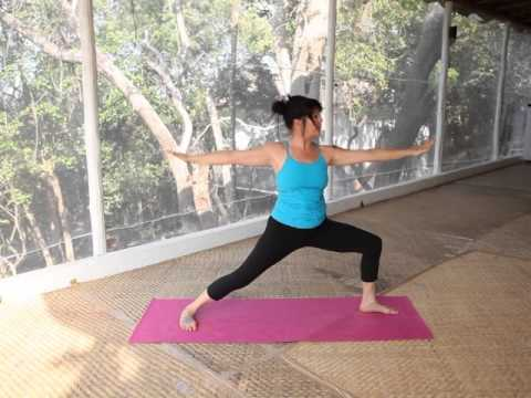 Backbend Sequence - Dynamic Sequence -  Julie Martin - Brahmani Yoga
