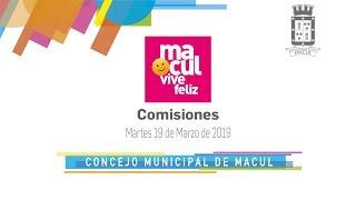 Comisiones / Concejo Municipal de Macul N°101 / 19-03-2019