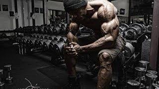 Bodybuilding Motivation - No Pain No Gain