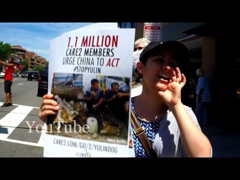 Protest against the Yulin Dog Meat Festival