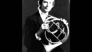 Beethoven Sonate Op. 17 Allegro Moderato Jan Schroeder