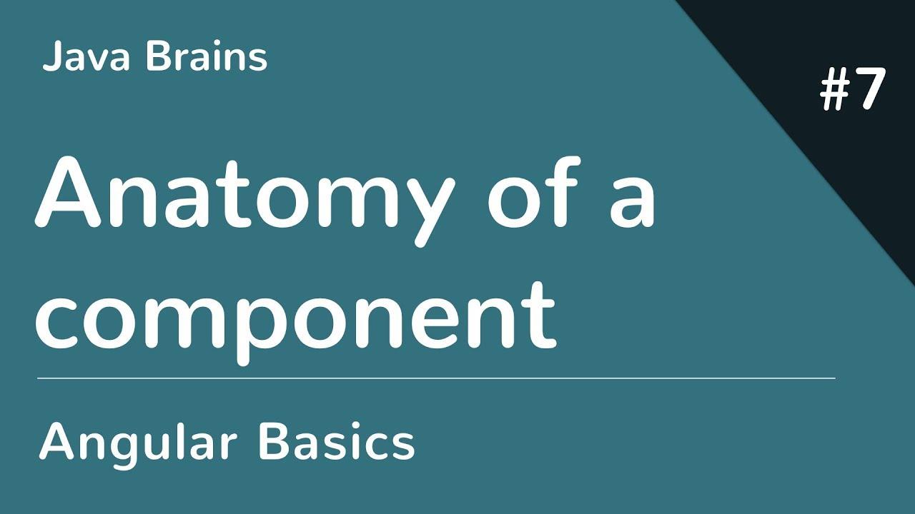 Angular 6 Basics 7 - Anatomy of a component