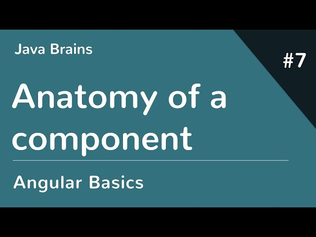 Angular 6 Basics 7 - Anatomy of a component
