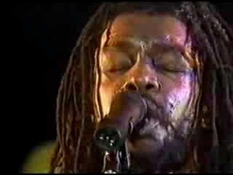 peter tosh - bush doctor [ 83 holland ]