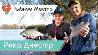 ЛЕЩ В НОЯБРЕ! Ловля на фидер поздней осенью на реке Днестр. Рыбное место.