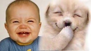 Cand catelusii fac bebelusii sa rada in hohote :))