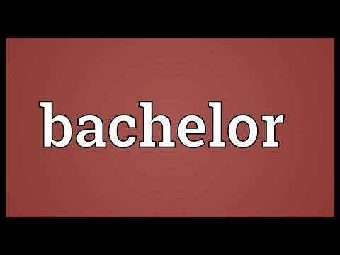 Bachelor Meaning