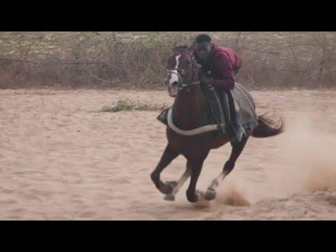Senegalese teen dreams of being world's top jockey