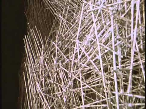Harry Bertoia's Sculpture - A documentary about Harry Bertoia 1965