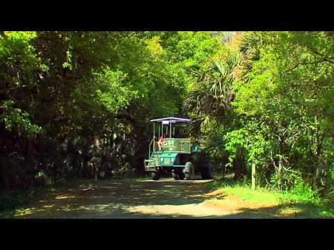 """""""Discover the Great Outdoors in Kissimmee, Florida"""" - Travel destination video"""