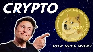 CRYPTOCURRENCY 101 (ELON MUSK APPROVED) Blockchain for Noobs