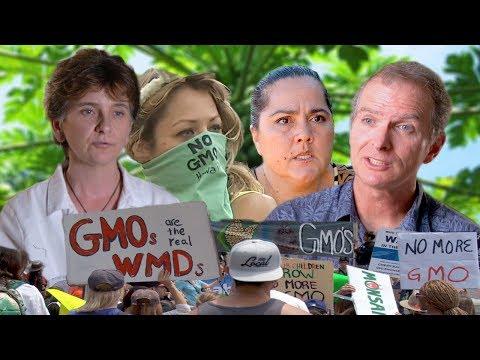 GMO Hawaii