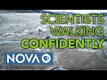 Scientists Walking Confidently