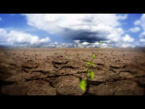 Rethink | Sustainability