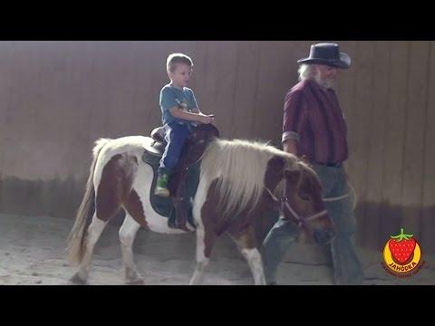 Škôlkári z Jahôdky na výlete za koníkmi
