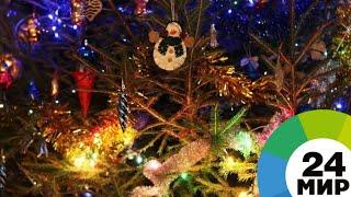 В кругу семьи и с большим костром: новогодние традиции Северной Осетии - МИР 24