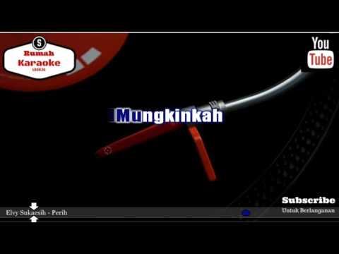 Karaoke Elvy Sukaesih - Perih (REmix)