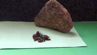 Animované filmy -  Krátký život kytky