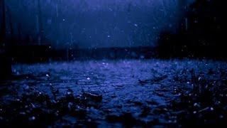 Suara hujan dan katak (Rain & Frogs) - Relaksasi