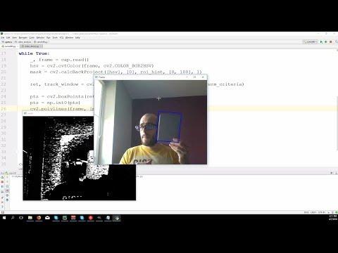 Python OpenCV  Find rectangular object and warp it to bird
