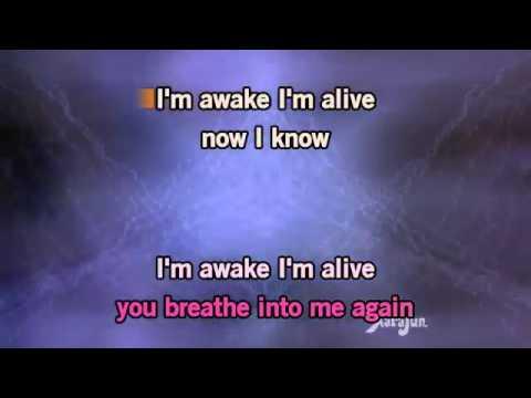 Karaoke Awake and Alive   Skillet