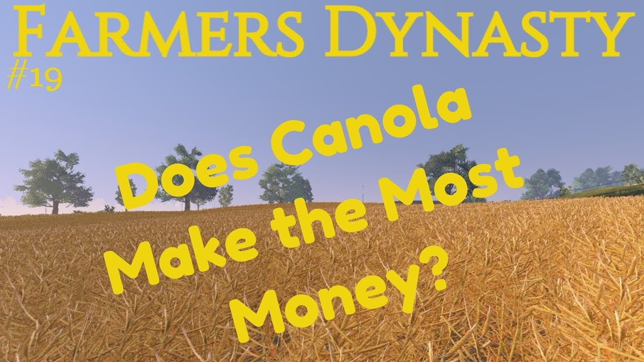 Farmers Dynasty | #19 | Does Canola Make the Most Money? |