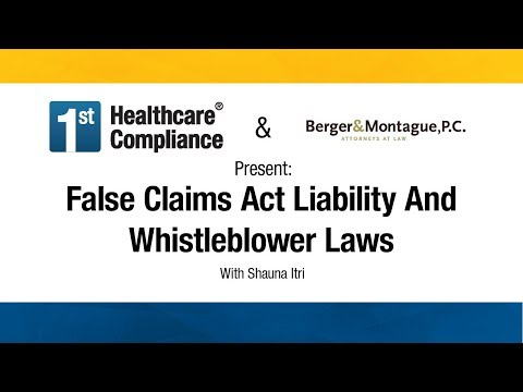 False Claims Act Liability And Whistleblower Laws