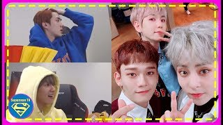 Their Translator wasn't Sure of Who were the Members in EXO CBX&Here's How Sehun&Baekhyun Reacted