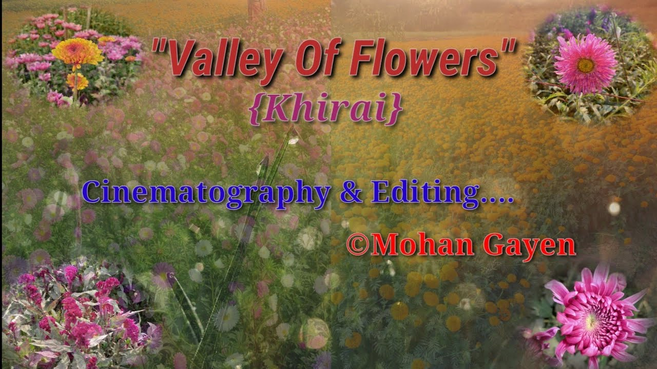 Khirai:Valley of flowers
