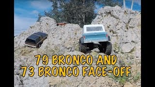 Traxxas TRX4 Ford Bronco crawling rock face