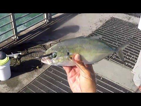 Fishing Chatterbait