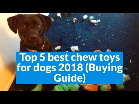 top-5-best-chew-toys-for-dogs-2018-(buying-guide)