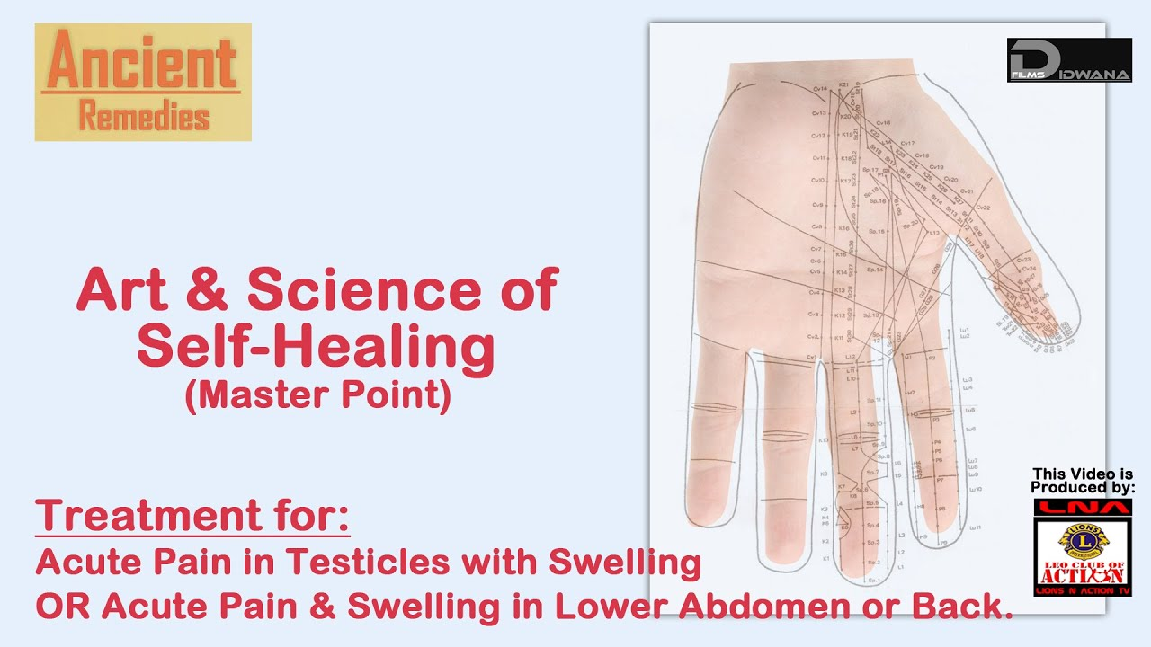 acute pain in testicles swelling acute pain swelling lower abdomen or back ancient remedies [ 1280 x 720 Pixel ]
