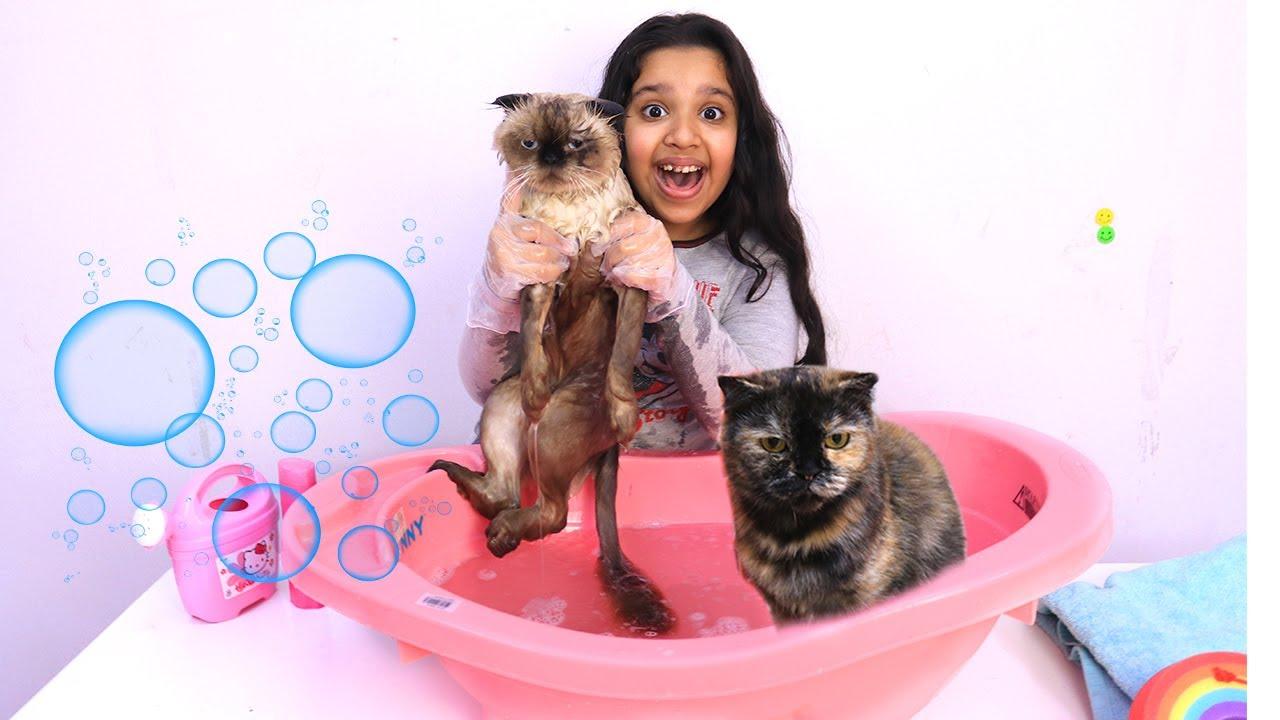 شفا تسبح قططها !! Shfa bathing kitten