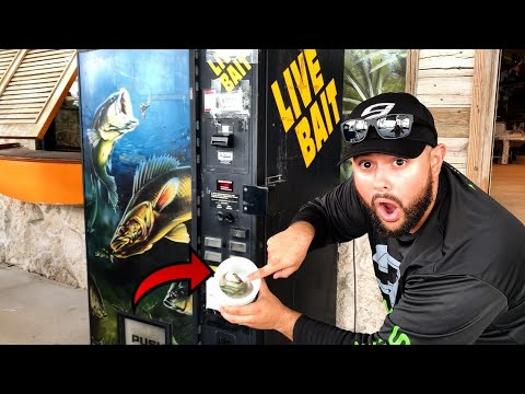 BUYING LIVE FISH BAIT FROM A VENDING MACHINE!