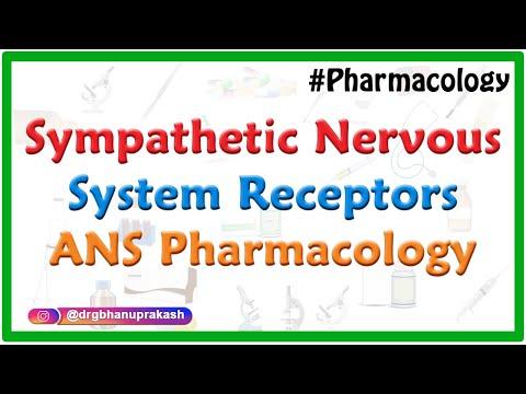 Sympathetic Nervous System Receptors - ANS Pharmacology - Dr