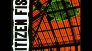 Citizen Fish - Supermarket Song