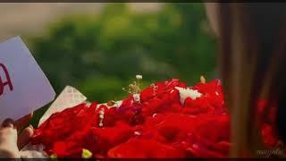 • Tu mila hai || Altamash & Izza