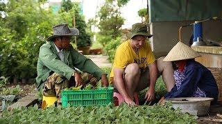Tiềm năng phát triển du lịch nông nghiệp ở Việt Nam : Câu chuyện hội nhập