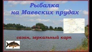 Рыбалка на Маевских прудах (платник)